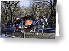 Carriage Driver - Central Park - Nyc Greeting Card