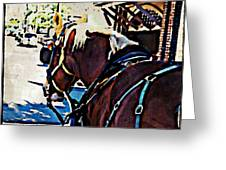 Carriage Horse Greeting Card