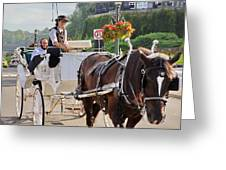 Carriage Ride Down River Road Greeting Card