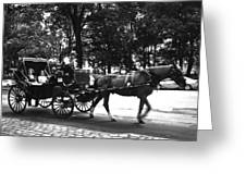 Carriage Ride Nyc Greeting Card