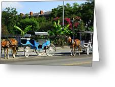 Carriage Tours New Orleans Greeting Card