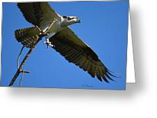 Carrying A Nest For A Living Greeting Card