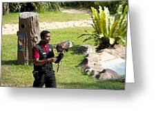 Cartoon - A Trainer And A Large Bird Of Prey At A Show Inside The Jurong Bird Park Greeting Card