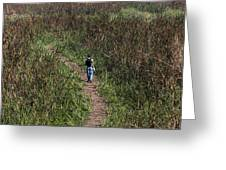 Cartoon - Man Walking Through Tall Grass In The Okhla Bird Sanctuary Greeting Card