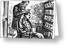 Cartoon: Phrenology, 1865 Greeting Card