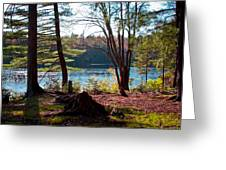 Cary Lake In The Fall Greeting Card