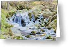 Cascade And Ice Greeting Card