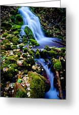 Cascade Creek Greeting Card
