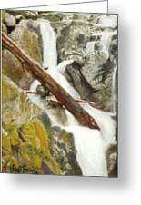 Cascade Creek Falls Greeting Card