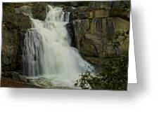 Cascade Creek Under The Bridge Greeting Card by Bill Gallagher