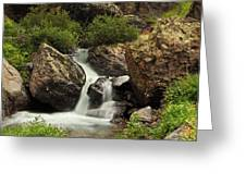 Cascade In Lower Ice Lake Basin Greeting Card