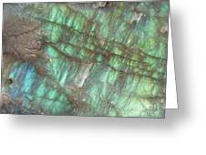 Cascade Of Green Greeting Card