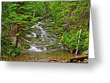 Cascade Over Mossy Rocks Along La Chute Trail In Forillon Np-qc Greeting Card