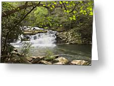 Cascades At Coker Creek Greeting Card