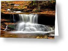 Cascades At Ricketts Glen Greeting Card