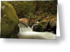 Cascades In Appalachian Mountains Greeting Card