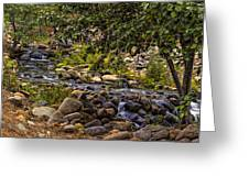 Cascading Creek Greeting Card