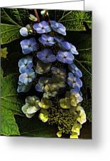 Cascading Flower Greeting Card