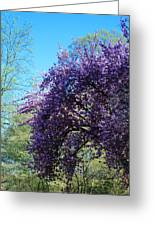 Cascading Flowers Greeting Card