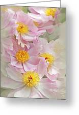 Cascading Pink Peony Flowers Greeting Card