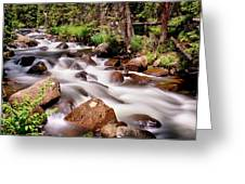Cascading Rocky Mountain Forest Creek Greeting Card