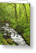 Cascading Stream In The Woods Greeting Card by Andrew Soundarajan