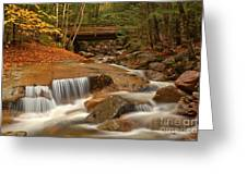 Cascades Below Flume Gorge Greeting Card