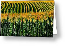 Cash Crop Corn Greeting Card