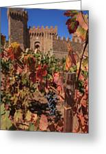 Harvest Castelle Di Amorosa Greeting Card