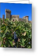 Ripe On The Vine Castelle Di Amorosa Greeting Card