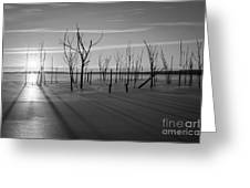 Casting Shadows Bw Greeting Card