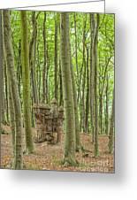 Castle Tree Stump Greeting Card