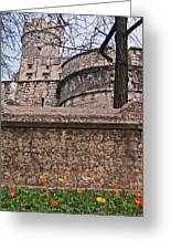 Castle With Poppies Greeting Card