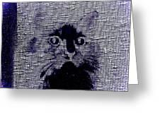Cat 2 Greeting Card
