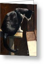 Cat At A Window With A View Greeting Card