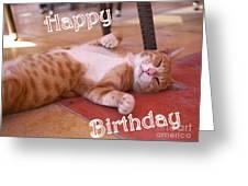 Cat Birthday Card Greeting Card