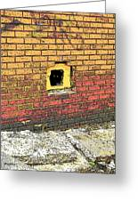 Cat In A Hole In A Wall Greeting Card
