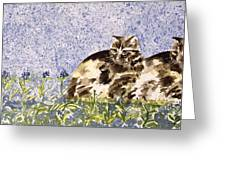 Cat Mint Wc On Paper Greeting Card