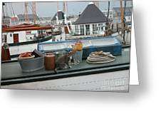 Cat On Boat Greeting Card