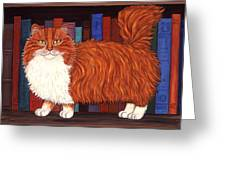 Cat On Book Shelf Greeting Card