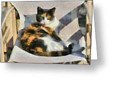 Cat On Chair Greeting Card