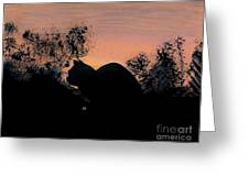 Cat - Orange - Silhouette Greeting Card