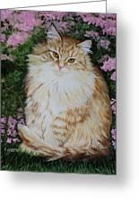 Kitten Cat Painting Perfect For Child's Room Art Greeting Card