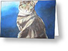 Cat Profile Greeting Card
