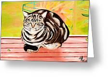 Cat Relaxing Greeting Card
