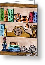 Cat Shelves Greeting Card