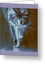 Cat Walking Greeting Card