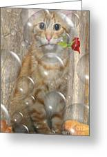 Cat With Bubbles Greeting Card by Jo Collins