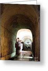 Catacombs In Palermo Greeting Card