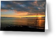 Catalina Island Sunset Greeting Card